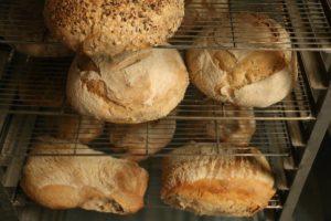 Pains cuits au four à bois - Les Pains du Vercors
